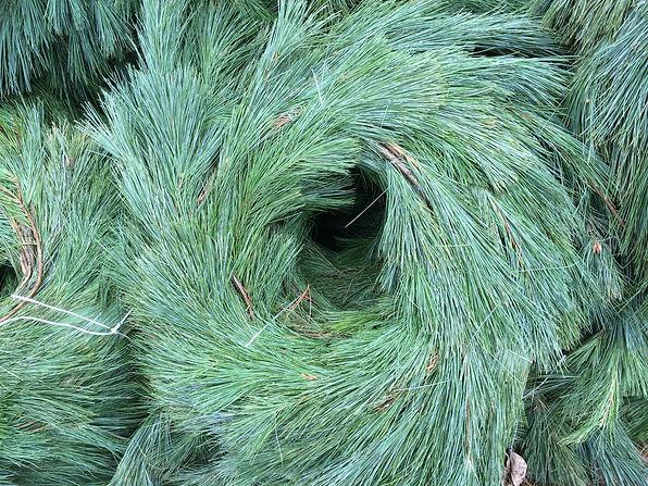guirlandes en pin blancs