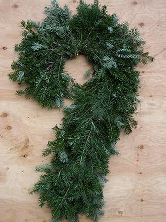christmas candy cane balsam fir
