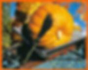 citrouille géante