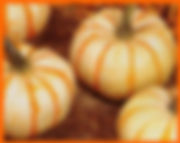 pump-ke-mon pumpkins