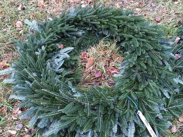 big fraser fir christmas wreath