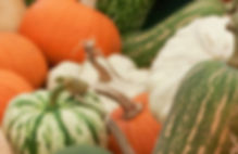 Gourdes and Squashes