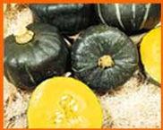 buttercup pumpkins