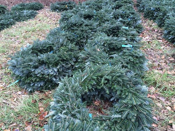 Fraser Fir Christmas Wreaths