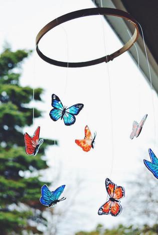 Covid-friendly butterfly release