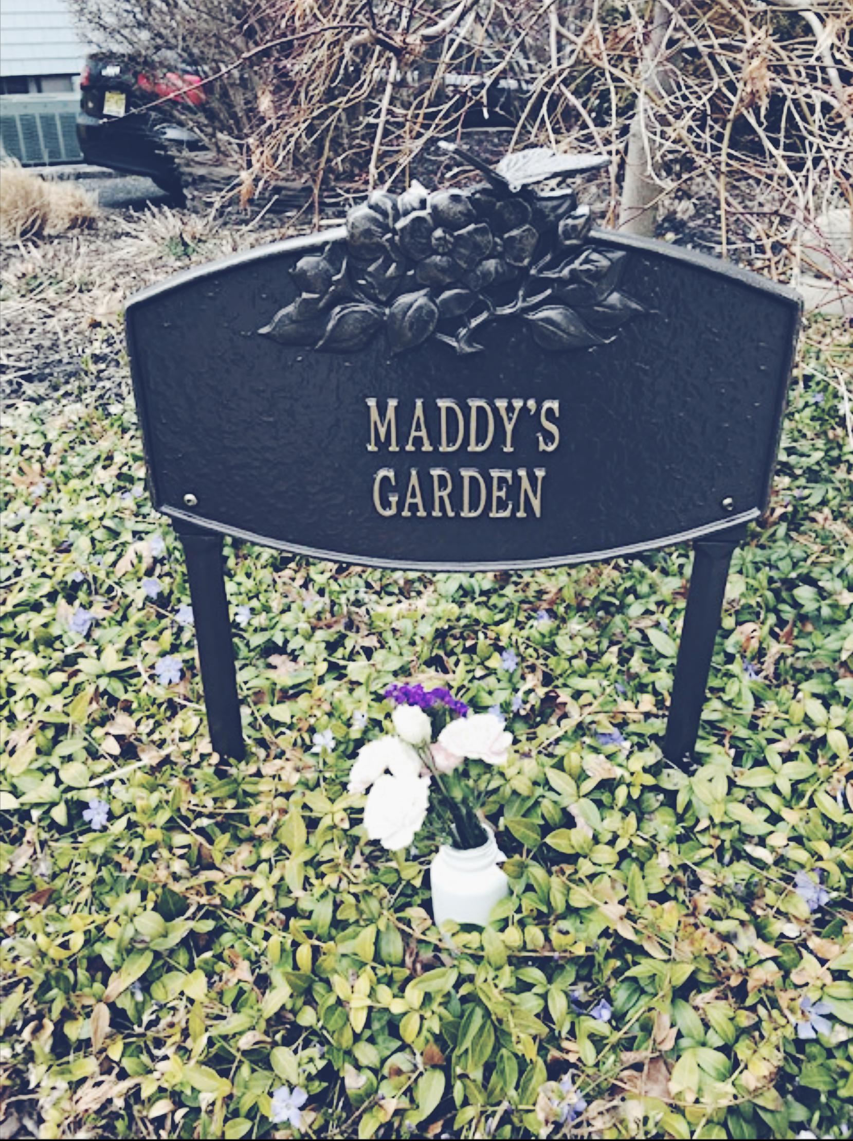 Maddy's Garden