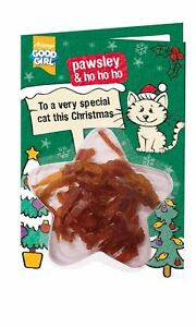 Cat Christmas Card with Treats