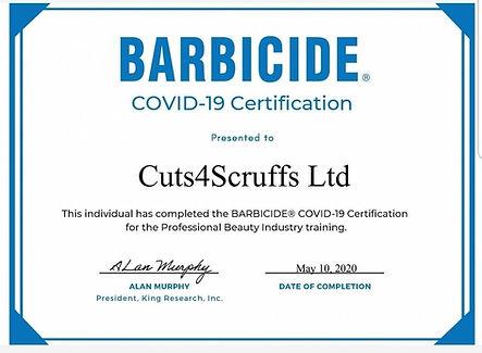 covid certificate barbicide.jpg