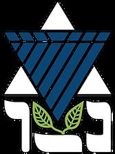 shnat-netzer-logo1.png
