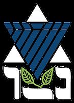 netzer-logo_home.png