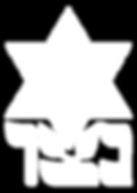netzer-logo.png