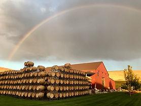 Owen Rainbow.jpg