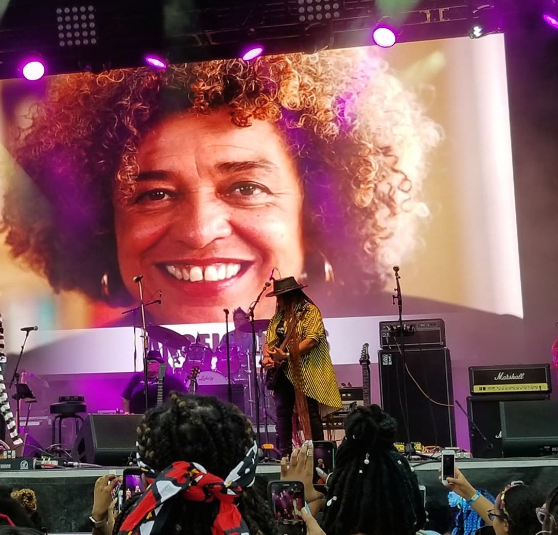 Afropunk Felica and Angela Davis screen.jpg