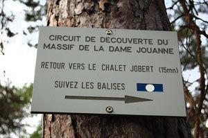 auberge-dame-jouanne-larchant--0246.jpg