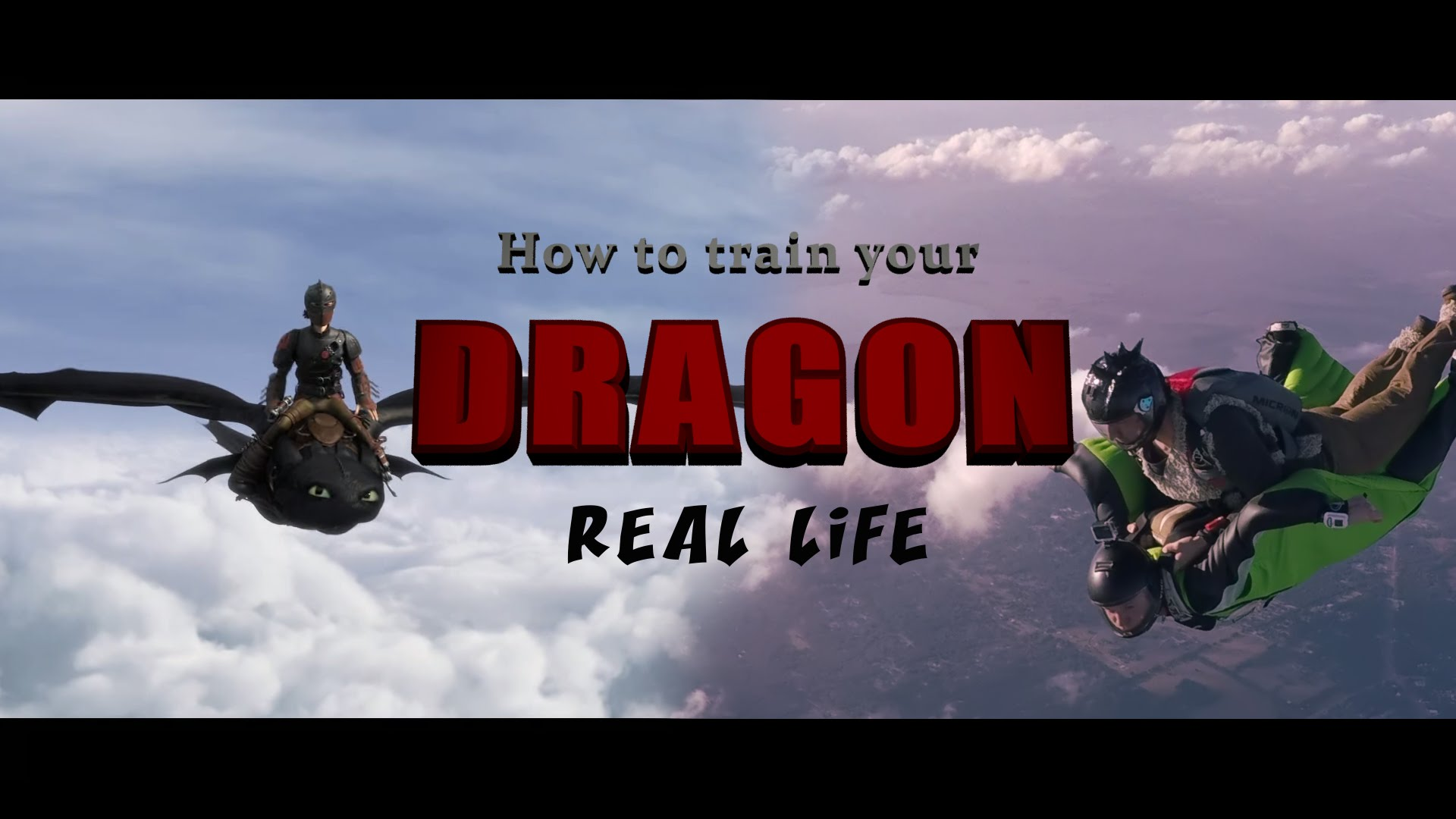 How to train your dragon - real life