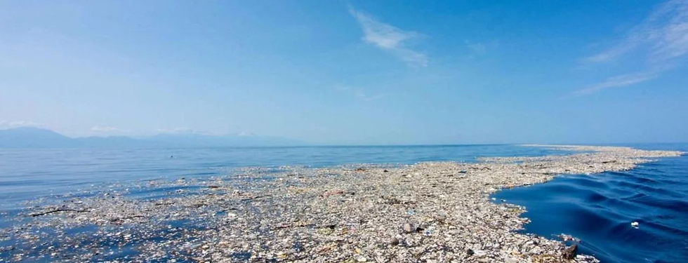 Plastic Ocean Cleanup