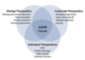 AI Solution Product Management Course.jpg