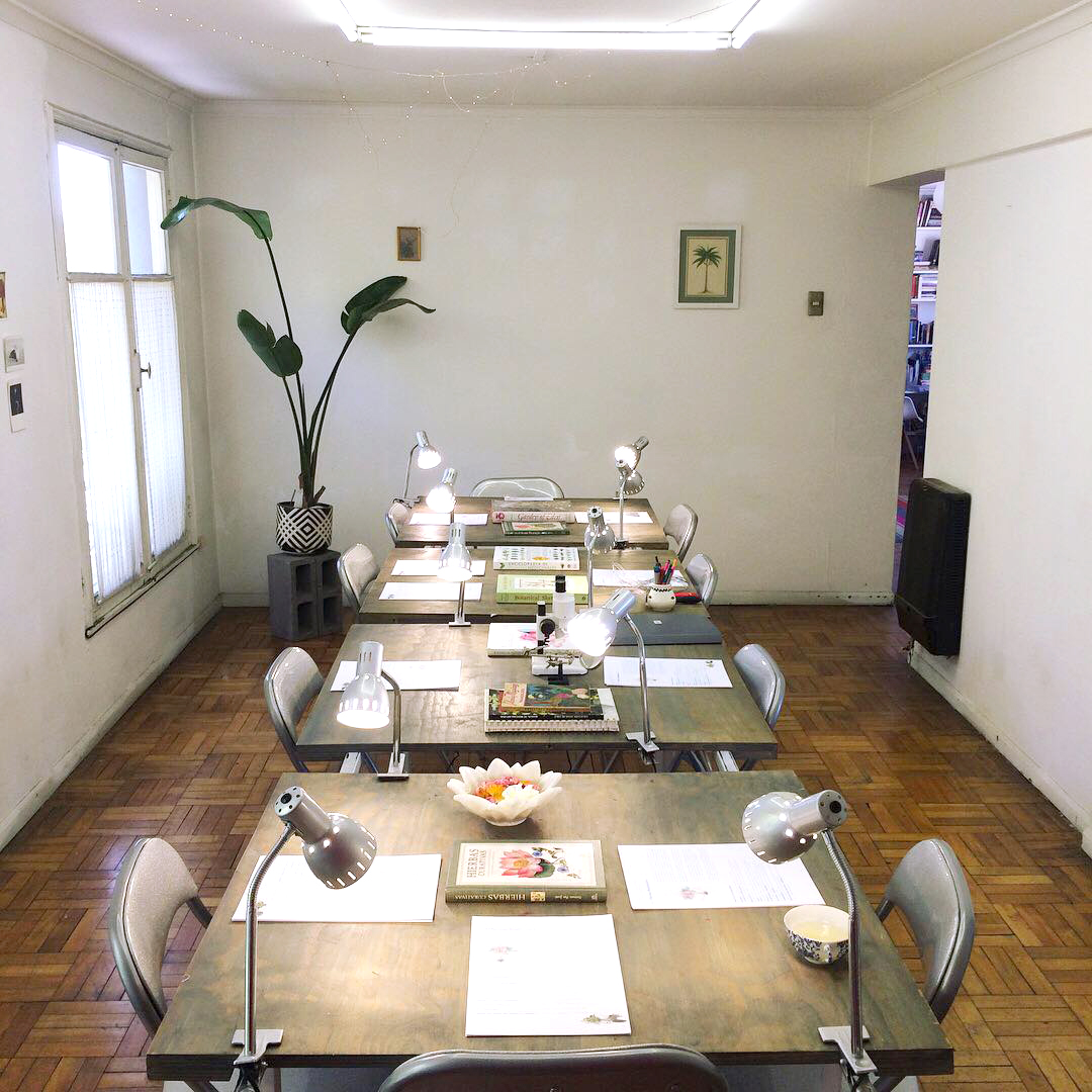Studio Vegetalista en Santiago