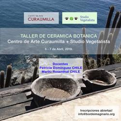 Centro de Arte Curaumilla