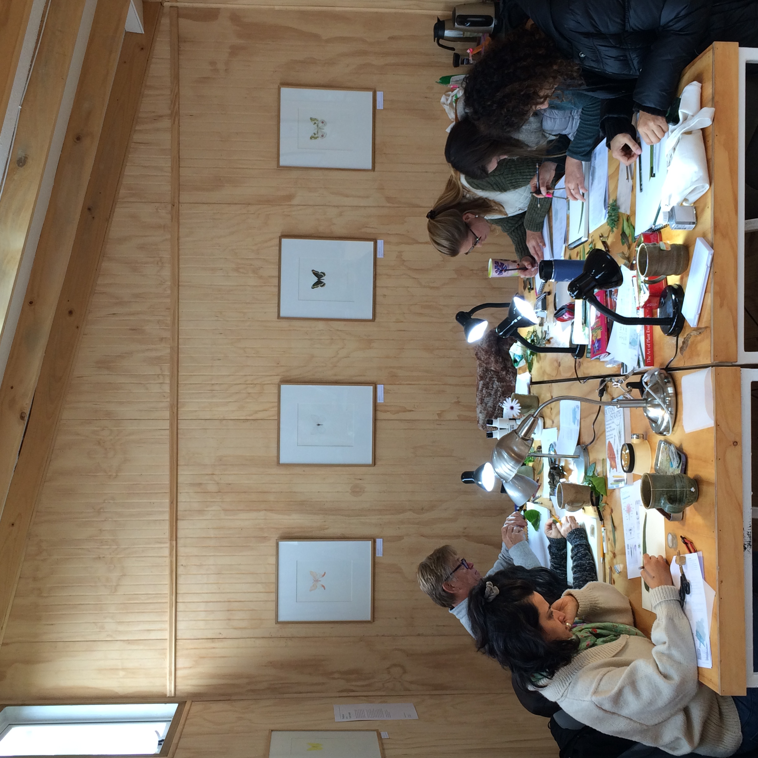 Botanical Illustration workshop