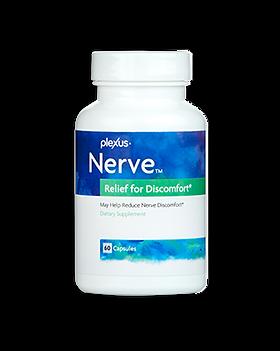 plexus-nerve-v2.png
