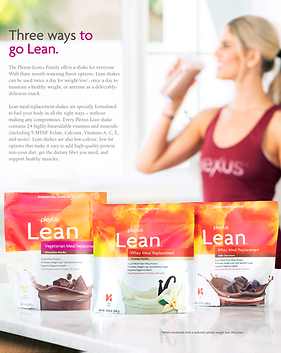 lean-family-brochure-3.png