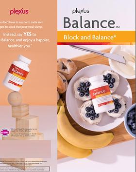 Balance Brochure.PNG