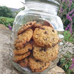 #veganfoodtruck _#cookies_#lafetedesanim