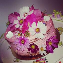 #veganfood _#birthdaycake_#💕💕💕 Chacha
