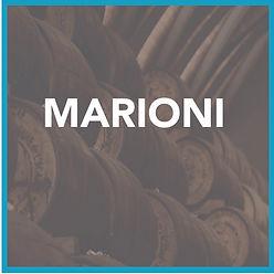 marioni-icon.jpg