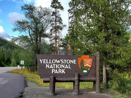 Yellowstone & The Tetons Tour MAY 2021...