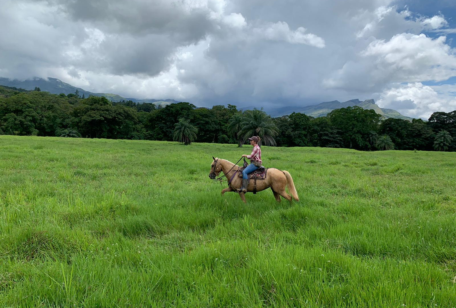 Build a bond with your horse, experience Panama from the saddle.