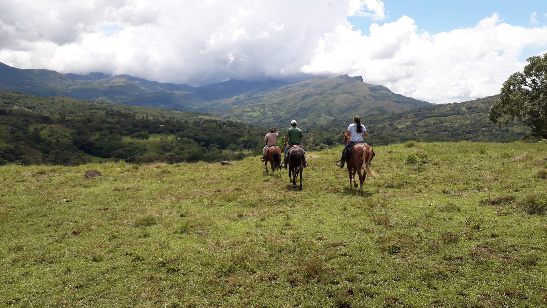 Horseback riding in central Panama.