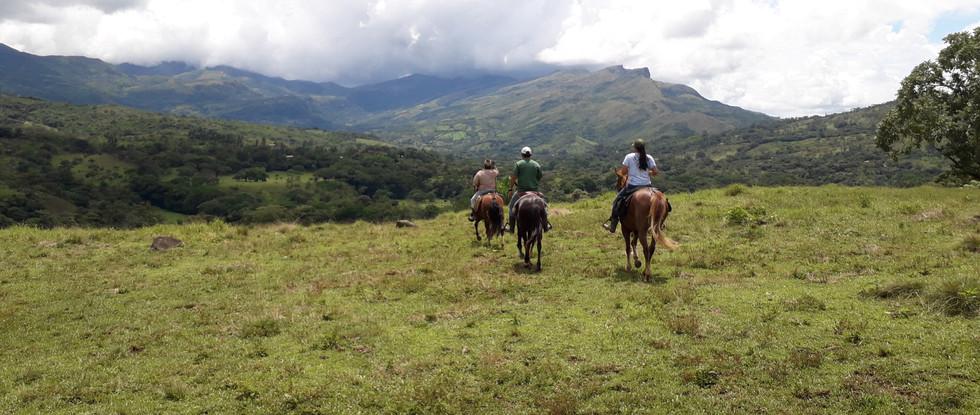 Horseback riding in central Panama.