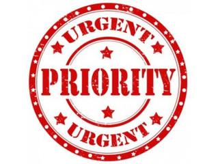 PMO Priorities 2019