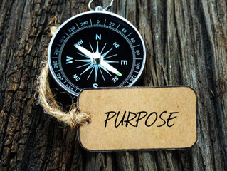The Power Of Purpose In Projects
