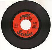 what-strider-record-600dpi (2).jpg