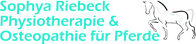 Logo v4ohne kreis.png