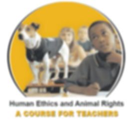 a course for teachers.jpg