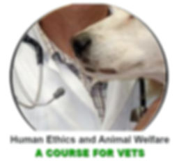 a course for vets.jpg