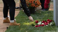 Roses in memory of 75 children