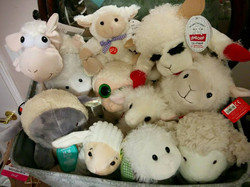 Lamb collection for 2015 book launch