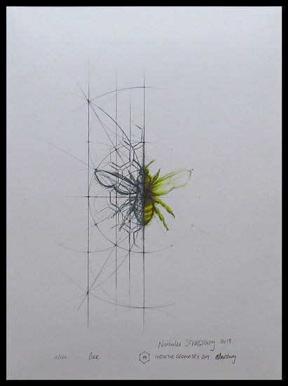 BEE. Signed , limited-edition print by Nathalie Strassburg.