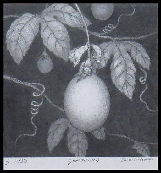 GRENADALA, signed limited-edition print, by Susan Kemp.