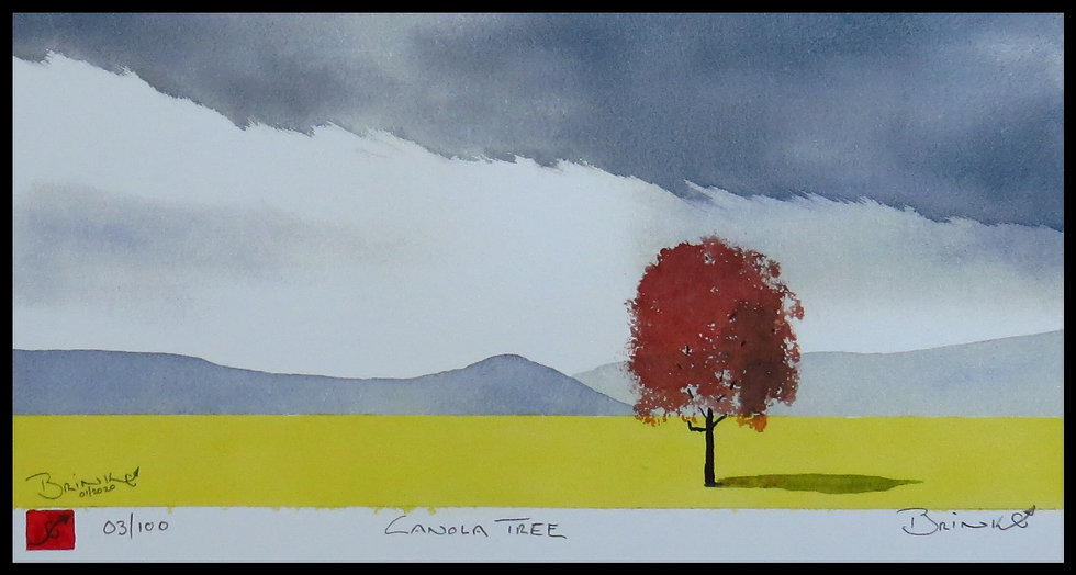 CANOLA TREE. Signed, limited edition print by Johan Brink.