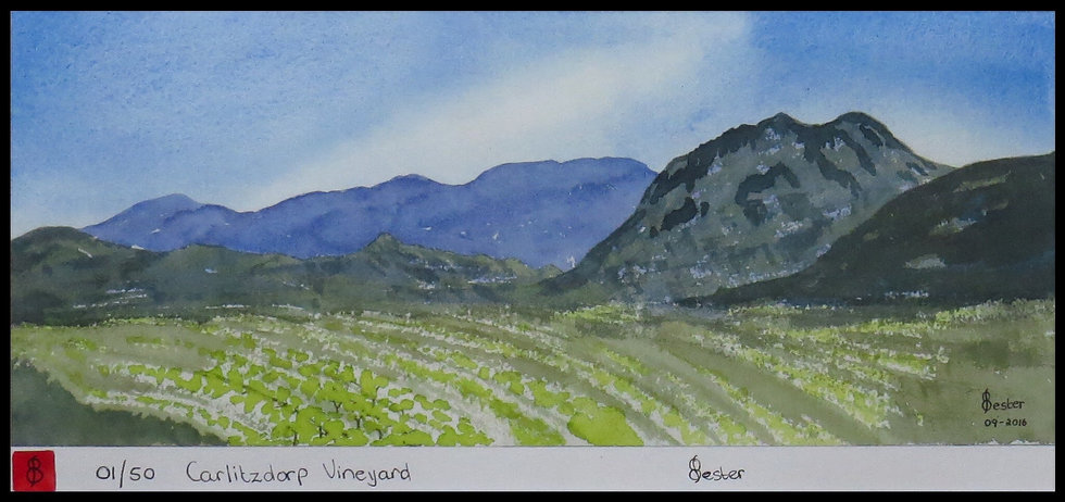 CALITZDORP VINYARD. Signed limited-edition print by Elzette Bester.