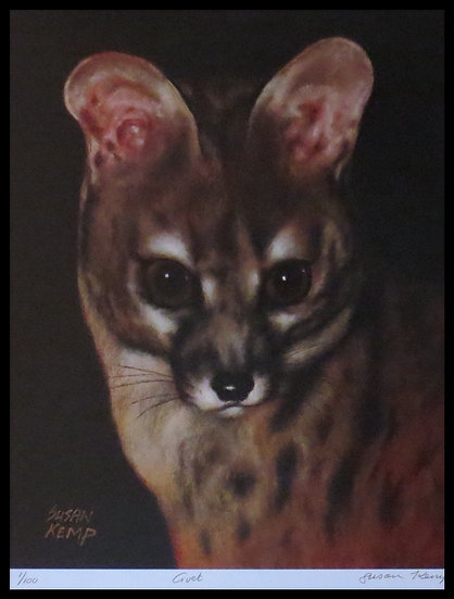 CIVET. Signed limited-edition print by Susan Kemp.