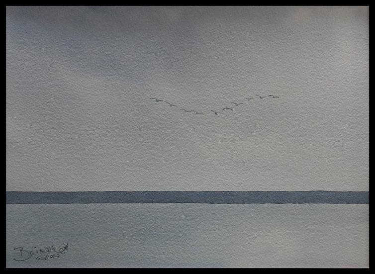 FLYING. 325mm x 240mm. Framed. Watercolour by Johan Brin