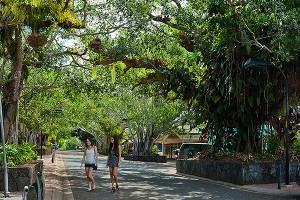 Kuranda Main Street