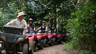 Relaxing rainforest ATV journey